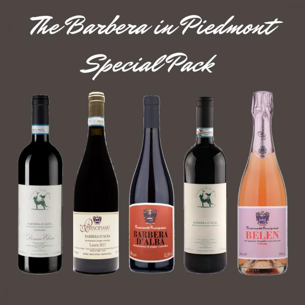 Barbera wine box